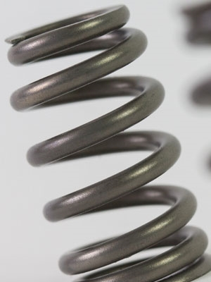 Controlled Gas Nitrided Automotive Valve spring
